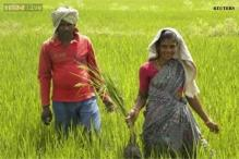 Centre to release Rs 400 crore crop insurance for Gujarat farmers