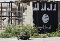 Iraq: IS runs hotels, bridal shops, malls to lure jihadi recruits