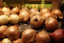 Government approves bids for 1k tonnes of onion import