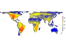 New map reveals how the world would appear without humans