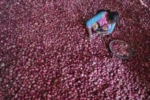 Onion prices fall below Rs 50/kg at Lasalgaon on export curbs, retail prices still high
