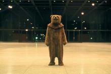 Man in bear costume harasses grizzlies in Alaska, motive unclear