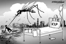 Delhi: 277 dengue cases in 2nd week of November; total crosses 15,500