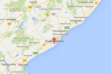 Dogs tear apart 20-month-old boy in Vizag