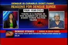What can be done to defeat dengue in the next 30 days?