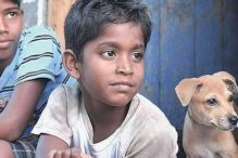 Why 'Kaaka Muttai' deserved a chance at the Oscars this year