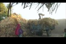 Rajasthan village leads the way in water management
