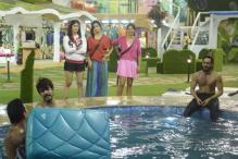 'Bigg Boss 9' Day 25: Rochelle abuses Rishabh; Puneet Vashist promises to add more flavour as the new wild card entry in the house