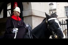 Watch: How Buckingham Palace guard reacts when questioned