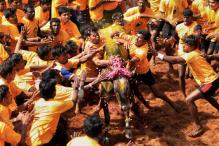 SC stay on Jallikattu sparks protests; Centre assures action