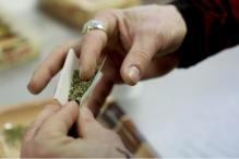 Marijuana Use Linked To Poorer School Performance