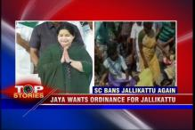 News 360: Jaya wants ordinance for Jallikattu