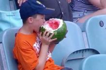 Watch: 10-year-old Australian boy eats a whole watermelon during a cricket match at the MCG