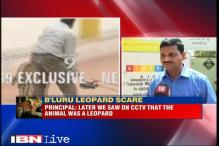 Leopard enters school premises in Bengaluru, 4 injured