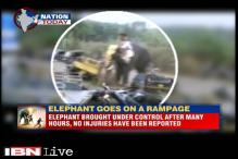 Elephant in Kerala goes on rampage, destroys vehicles