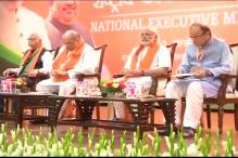 BJP National Executive hails Modi government for ushering in true 'panchayati raj'
