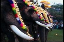 PETA sends legal notice to Kerala government seeking withdrawal of order on illegally captive elephants