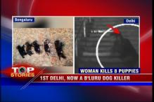 Watch: Bengaluru woman booked for allegedly killing eight puppies gets bail