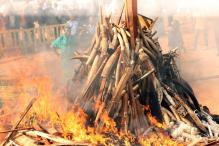 Kenya Lights World's Biggest Ivory Bonfire
