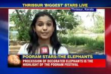 Pooram Festival Starts Today, 2000 Kg of Firecrackers Allowed