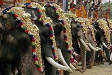Thrissur Pooram festival starts today with riders on fireworks