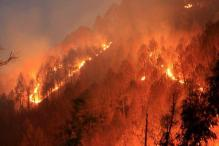 Forest Fires Rage Across Uttarakhand, Air Force Help Sought