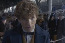 The new teaser trailer of 'Fantastic Beasts and Where to Find Them' will infect you with magic again!