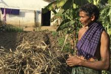 Modi's rural income promise leaves Indian farmers, experts cold