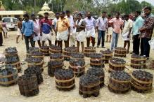 Rules broken at Kerala temple, banned potassium chlorate used in fireworks