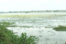 People Chip in to Revive Dharam Sagar Lake in MP