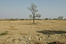 Farmers Fleeing Latur Drought End Up at Dumps in Mumbai