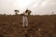 Centre Forms Panel to Work For Doubling Farmers' Income