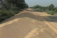 Lack of Storage Leads to Wastage of Crops in Rohtak