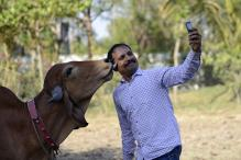 Has the Obsession for Selfie Gone Too Far?