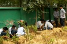 NGO Swechha's Initiative: Plant a Tree, Reduce Pollution