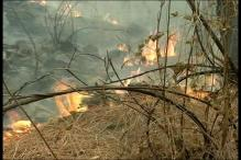 Uttarakhand Forest Fire: Agencies Fight Sporadic Blazes