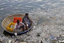 Predatory Foreign Fish Killing Native Species in Bengaluru Lakes