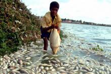 The Vanishing Act: Bengaluru No Longer a Lake City?