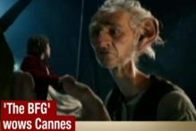 Steven Spielberg's New Film Wows Cannes
