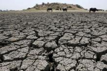 Central Team Arrives to Assess Drought Impact in Tamil Nadu