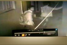 Tech-Savvy Robbers Using Facebook to Break Into Houses