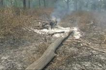 U'khand Forest Fire Continues; 1,900 Hectares of Green Cover Damaged