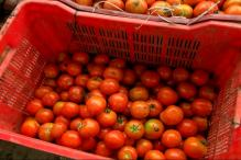Tamil Nadu: Tomato Prices Soar from Rs 45/Kg to Rs 65/Kg