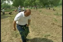 Volunteers Plant More Than 1,500 Saplings on Environment Day