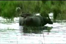 Assam Districts Flooded, Chirang Worst-Affected