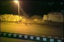 Watch: A Pride of Lions Stroll Down a Highway in Gujarat