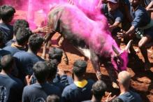 Mere Presence of Tradition Can't Justify Its Practice: SC on Jallikattu