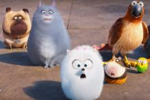 'The Secret Life of Pets' Sequel Is in Development