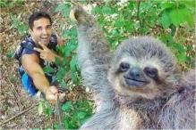 This Man Clicked A Selfie With A Smiling Sloth And It's Breaking The Internet