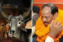 Those Who Consider India Their Country, Should Treat Cow as Mother: J'khand CM